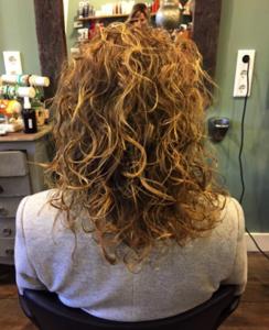 Curlsys1