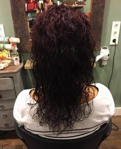 Curlsys2b
