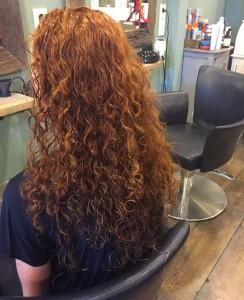 curlsys_v1