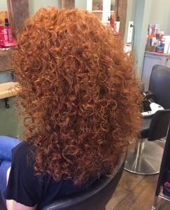curlsys_v2